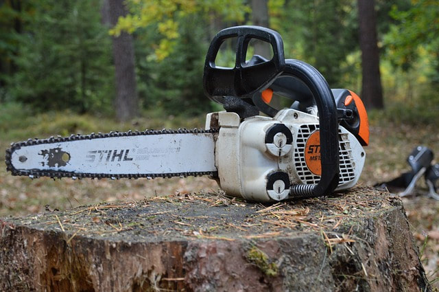 A stihl chainsaw on top of a freshly cut stump